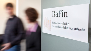 BAFIN HOLDINGS - Company Search